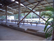 Camp Ground - Main Shed